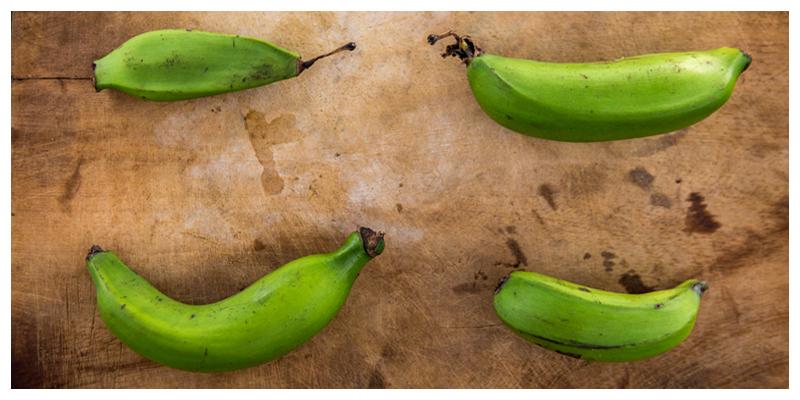 Slow Food Movement: Uganda's Banana Biodiversity